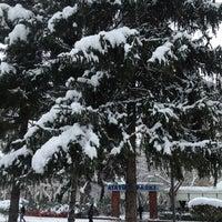 1/9/2013 tarihinde Atilla B.ziyaretçi tarafından Adı Bahçe'de çekilen fotoğraf
