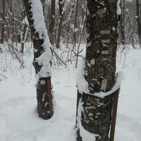 Photo taken at nagelbaum by Manuela S. on 1/18/2013