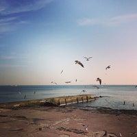 Снимок сделан в Пляж «Ланжерон» пользователем Vitaliy A. 3/1/2013