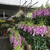 Photo taken at Siam Orchid Center by Curtis T. on 2/9/2018