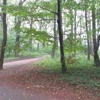 Photo taken at Parc départemental de Lacroix-Laval by regisy b. on 10/7/2012