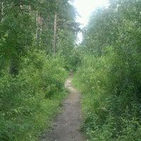 Photo taken at Сертоловский лес by Anton L. on 7/24/2013