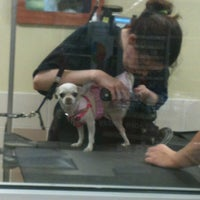 Photo taken at Petco by Veronica L. on 10/2/2013