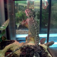 Photo taken at Petco by Hyder L. on 3/2/2013