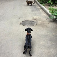 Photo taken at Росинка by Victoria K. on 8/29/2013