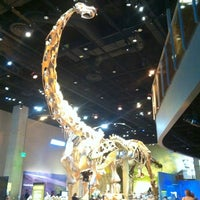 Photo taken at Perot Museum of Nature and Science by Allison C. on 11/25/2012