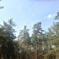 Photo taken at Козин by Анна К. on 4/24/2013