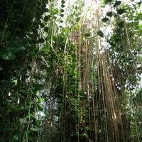 Photo taken at Biosphere 2 by Hui W. on 4/11/2013