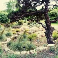 Photo taken at Cambridge University Botanic Gardens by kata t. on 6/17/2013