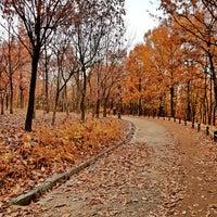 Photo taken at Hanbat Arboretum by Aaron C. on 11/18/2017