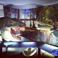 Снимок сделан в Вятский палеонтологический музей пользователем mark b. 4/23/2013