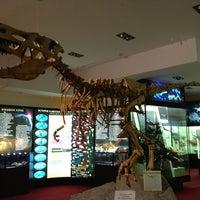 Снимок сделан в Вятский палеонтологический музей пользователем Наталья Б. 9/4/2013