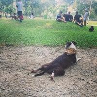 Photo taken at Dog Run @ Bishan Park by Leah F. on 9/6/2015