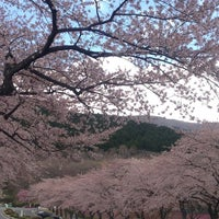 Photo taken at 冨士霊園 by Yo K. on 4/11/2013