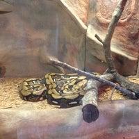 Photo taken at Little Rock Zoo by Jeremiah R. on 9/29/2012