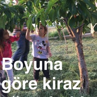 Photo taken at Terzili Köyü by Yasemin Ö. on 5/29/2016