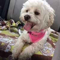Photo taken at Pet Valu by Ri on 3/12/2014