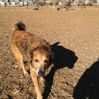 Photo taken at Fossil Creek Dog Park by Karenna G. on 2/2/2013