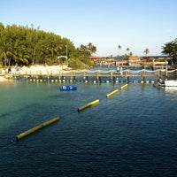 Photo taken at Dolphin Encounter by Lilla N. on 11/16/2013