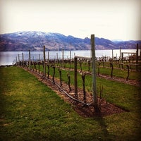 Photo taken at Little Straw Vineyards by Rhiann C. on 4/6/2014