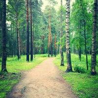 Снимок сделан в Парк «Сосновка» пользователем Коноплёв И. 7/1/2013