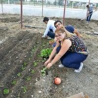 Photo taken at Akdeniz Üniversitesi Finike Meslek Yüksek Okulu by 👑M£R₩£👑 on 10/5/2013