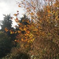 Das Foto wurde bei Llandover Woods von Zoe am 10/28/2017 aufgenommen