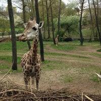 Photo taken at Zoo Schmiding by _hi_ke on 4/17/2016