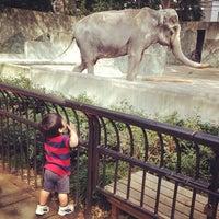 Photo taken at Inokashira Park Zoo by shuuuji on 10/6/2012