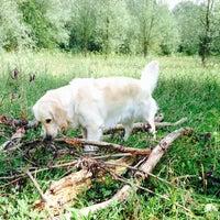 Photo taken at Parc Scheutbospark by Harmony L. on 7/20/2014