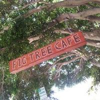 รูปภาพถ่ายที่ Fig Tree Cafe โดย Rachel H. เมื่อ 3/31/2013