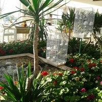 4/18/2013 tarihinde Sibel G.ziyaretçi tarafından Piknik'de çekilen fotoğraf