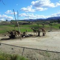Photo taken at San Diego Zoo Safari Park by Caroline on 12/16/2012