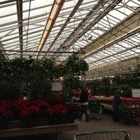 Photo taken at Hicks Nurseries by astami on 11/25/2012