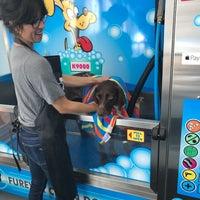 Photo taken at Furever Clean Dog Wash - Self Serve Dog Wash by Furever Clean Dog Wash - Self Serve Dog Wash on 11/22/2017