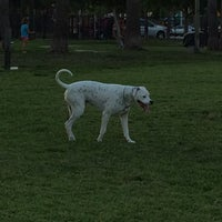 Photo taken at Canine Cove at South County Regional Park by Debbie K. on 5/25/2014