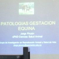 Photo taken at Facultad Medicina Veterinaria Y Zootecnia by Julián O. on 4/4/2013