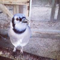 Photo taken at Seaside Seabird Sanctuary by Zsófia S. on 11/15/2014