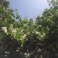 Photo taken at Harf Yayınevi by Özlem F. on 6/7/2016