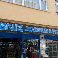 Photo taken at Deniz Akvaryum & Petshop by Volkan K. on 5/6/2013