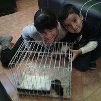 Photo taken at Zona de mascotas pericoapa by Israel B. on 1/5/2014