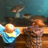 Photo taken at Bass Pro Shops by Clay M. on 3/26/2013