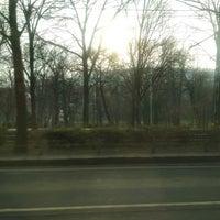 1/1/2018 tarihinde Emese T.ziyaretçi tarafından Városmajor'de çekilen fotoğraf