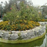 Foto tomada en Bosque El Olivar por Lily C. el 5/11/2013