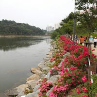 Photo taken at 풍암호수 장미공원 by Dianne C. on 6/1/2013