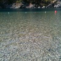 10/9/2012 tarihinde Egemen S.ziyaretçi tarafından Ölüdeniz Tabiat Parkı'de çekilen fotoğraf
