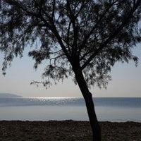 Photo taken at Mavi Bayrak Plajı by ELIF E. on 10/31/2013
