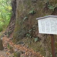 11/8/2014に海猫 寝.が矢倉沢往還で撮った写真