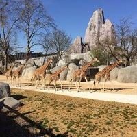 Foto tirada no(a) Parc zoologique de Paris por Alexandre O. em 3/29/2014