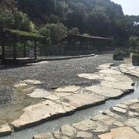 9/20/2017 tarihinde Özge D.ziyaretçi tarafından aqua mia çamur banyosu ve termal havuz'de çekilen fotoğraf